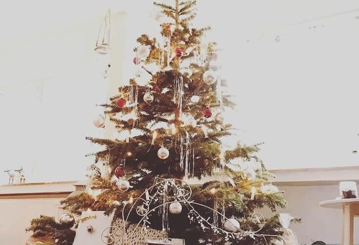 Bild zur News Frohe Weihnachten